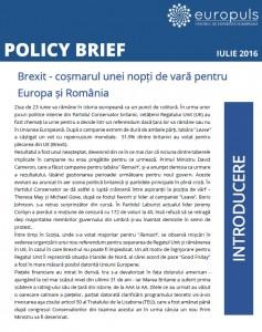 Policy Brief Europuls