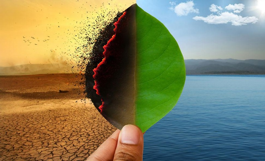 Cum pot actorii locali să devină jucători cheie în combaterea schimbărilor climatice